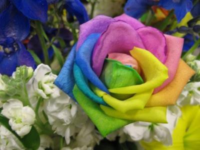 rainbow+rose+happy+roses.jpg